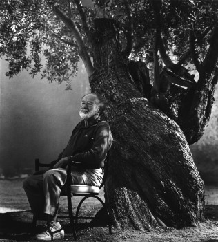 Konrad Rufus Müller: Bruno Kreisky Under an Old Olive Tree